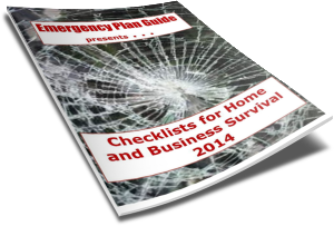 Checklists for Home and Business Survival